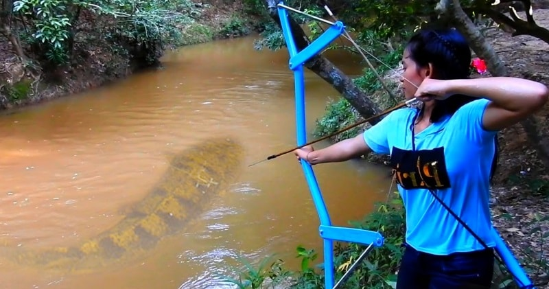 In This Video I Want To Show You About Amazing Girl Uses PVC Pipe Compound BowFishing To Shoot Huge Fish -Khmer Fishing At Siem Reap Cambodia. & Girl Uses PVC Pipe Compound BowFishing To Shoot Fish | Sia Magazine