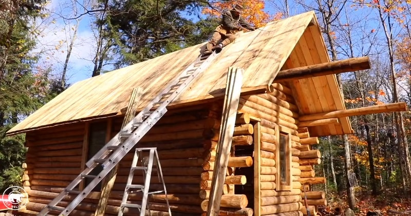 Log Cabin Timelapse Built By One Man In The Forest A