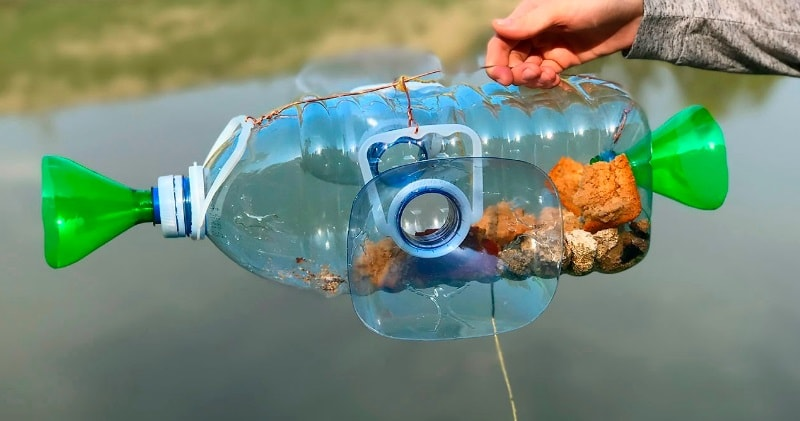How To Make A Fish Trap With Plastic Bottle Catch Fish
